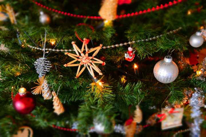 Christmas Tree, O ChristmasTree…