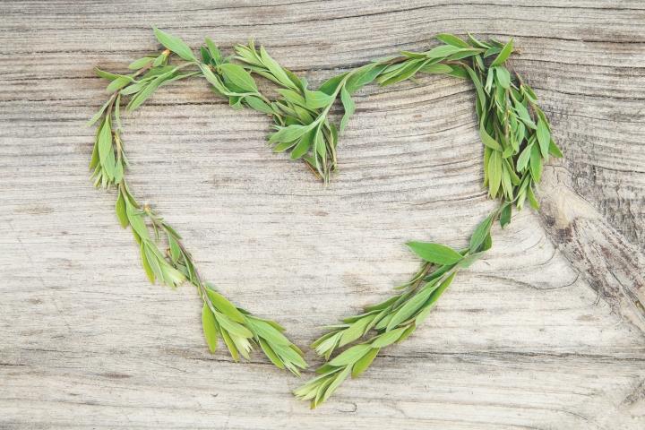 4 Eco-friendly Valentine's Day GiftIdeas